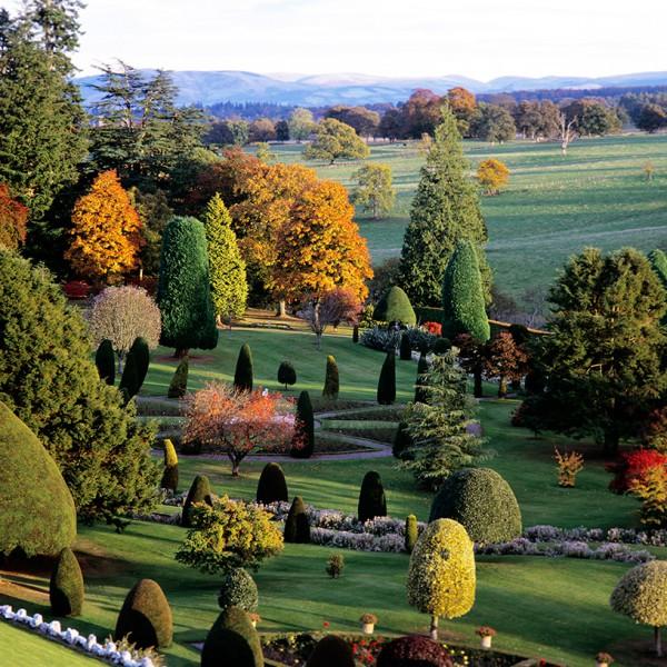 Autumn-in-Drummond